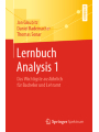Lernbuch Analysis 1