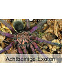 9783672123475 - Wolfgang Kairat dewolli.de: Achtbeinige Exoten (Wandkalender 2021 DIN A4 quer) - Kalender